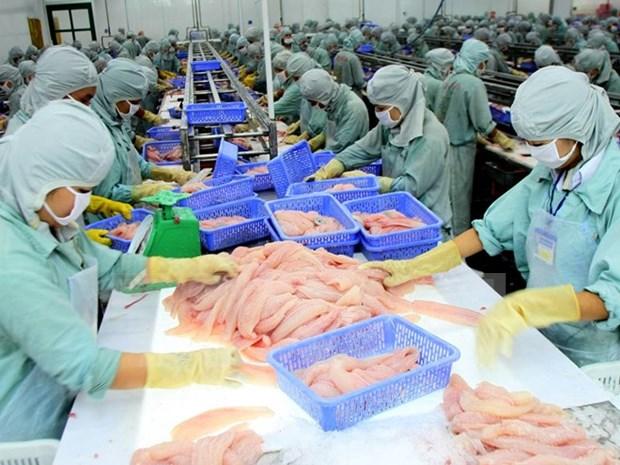 EE.UU. permite a 60 empresas de Vietnam exportar bagres a su pais hinh anh 1