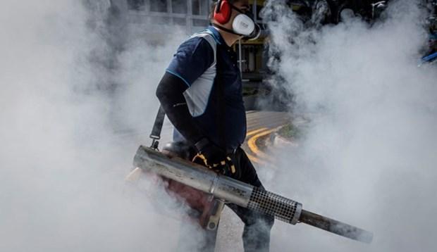 Advierten en Singapur sobre estado de dengue y Zika hinh anh 1