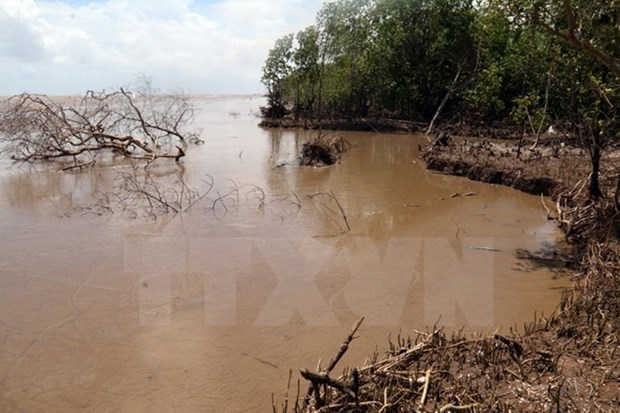 Actualizan escenarios de cambio climatico para estudios de impactos en Vietnam hinh anh 1