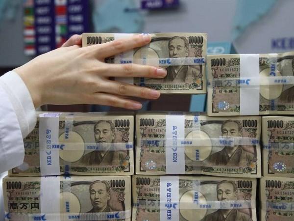 Japon continua el suministro de ayuda no reembolsable para Camboya hinh anh 1