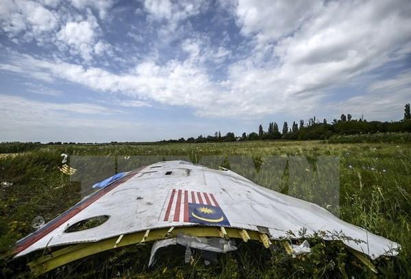 Australia sugiere un tribunal como el de Lockerbie para MH17 hinh anh 1