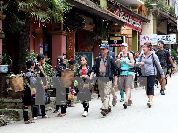 Crece llegada de turistas a Vietnam hinh anh 1