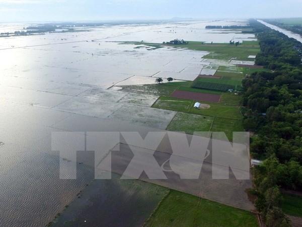 Construiran centro de datos ambientales en Delta de Mekong hinh anh 1