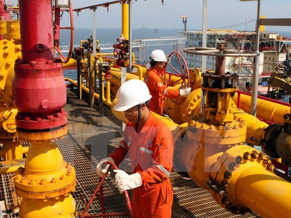 Vietnam inspecciona corporacion petrolera PVC hinh anh 1