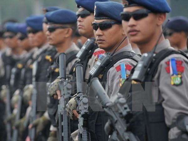 Singapur e Indonesia mejoran cooperacion de seguridad transnacional hinh anh 1