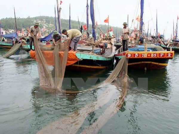 Provincia de Vietnam asiste a pobladores afectados por incidente ambiental hinh anh 1