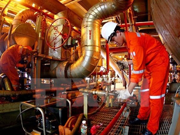 Grupo petrolero de Vietnam proyecta incrementar extraccion de crudo hinh anh 1