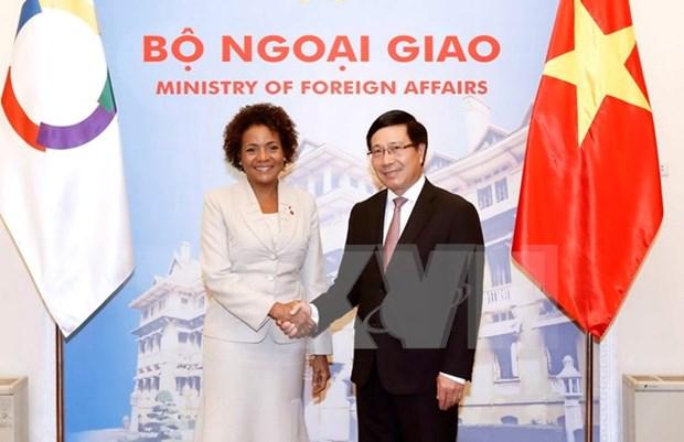 Comunidad francofona es socio importante de Vietnam, dice vicepremier hinh anh 1