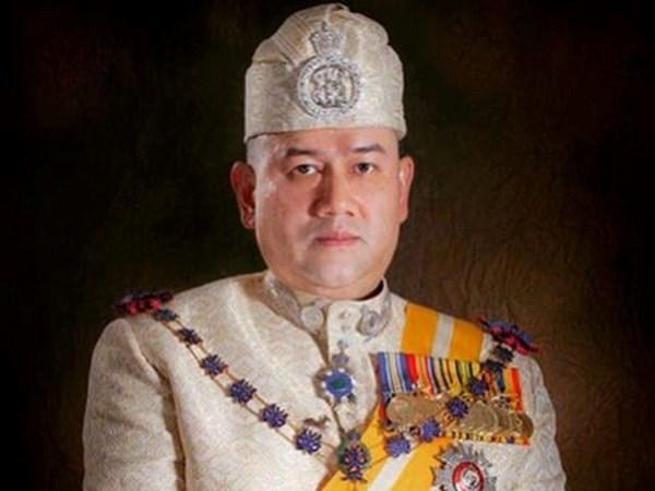 Elegiran sucesor de rey de Malasia hinh anh 1