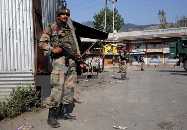 Vietnam aspira que India y Pakistan resuelvan problemas por medios pacificos hinh anh 1