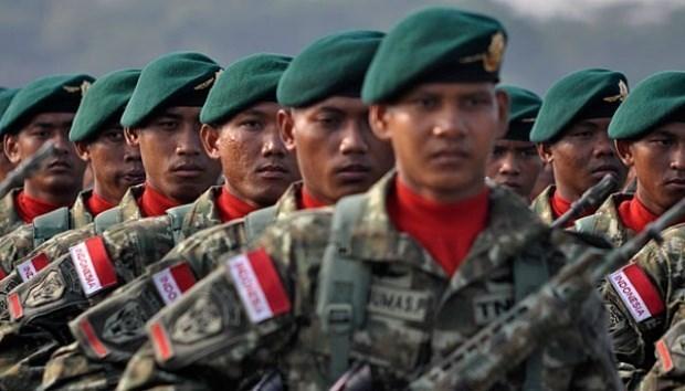Presupuesto de defensa de Indonesia inferior a la solicitud de gobierno hinh anh 1