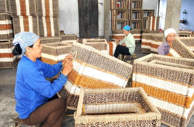 Hanoi invierte en desarrollo de zonas rurales hinh anh 1