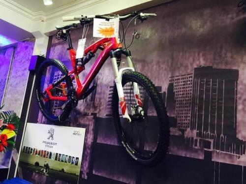 Exposicion de bicicletas abrira sus puertas en Hanoi hinh anh 1