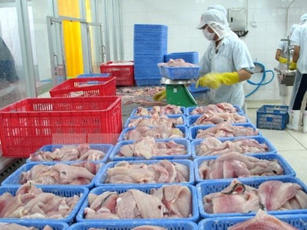 Vietnam pronostica crecimiento en exportaciones de pescado Tra hinh anh 1