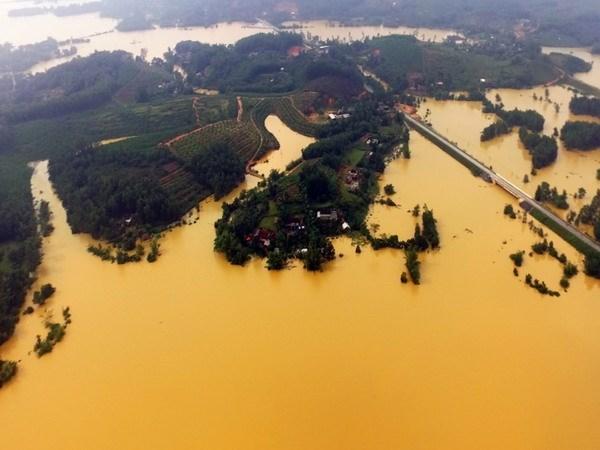 Se preparan localidades de Vietnam ante amenaza de tifon Sarika hinh anh 1