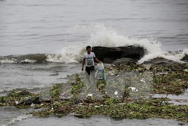 Tifon Sarika provoca perdidas humanas y materiales en Filipinas hinh anh 1