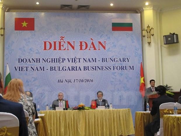 Vietnam, uno de los socios comerciales clave de Bulgaria en Sudeste de Asia hinh anh 1