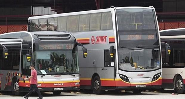 Ponen a prueba en Singapur buses auto-conducidos hinh anh 1