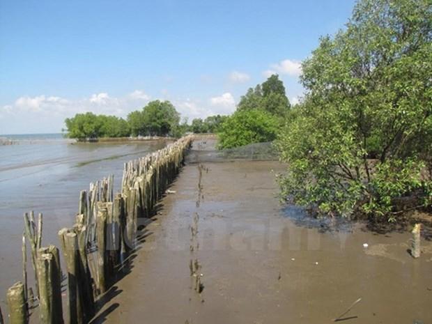 USAID asiste a Vietnam en proteccion de bosques y biodiversidad hinh anh 1