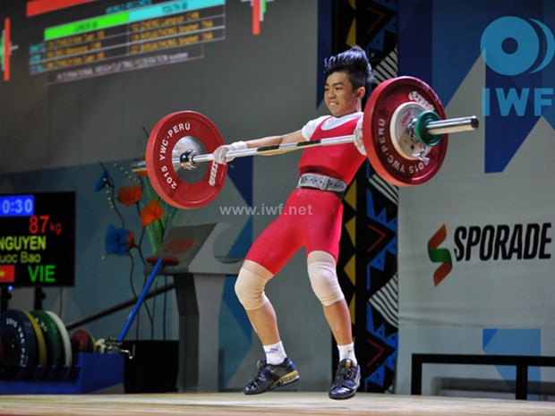 Vietnam gana dos de oro en campeonato de levantamiento de pesas hinh anh 1
