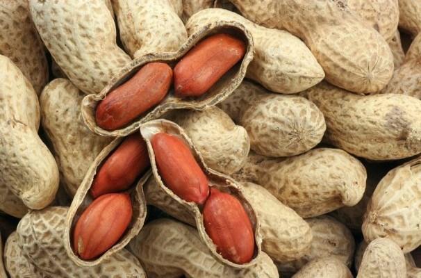 Vietnam suspende la importacion de cacahuates de Sudan y Hong Kong hinh anh 1