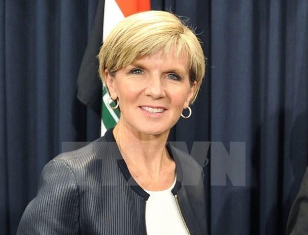 Indonesia y Australia fomentan cooperacion en seguridad y economia hinh anh 1