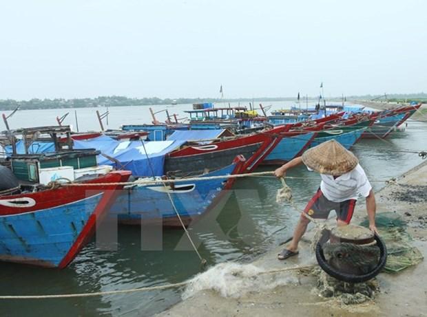 Cuestion de incidente ambiental en Centro de Vietnam se resuelve activamente hinh anh 1