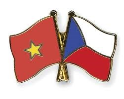 Vietnam y Republica Checa efectuan consulta politica a nivel de viceministro hinh anh 1