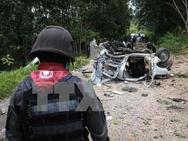 Tailandia refuerza seguridad en escuelas en region surena hinh anh 1