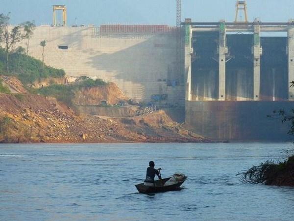 Vidas silvestres en subregion de Mekong enfrentan riesgos de disminucion hinh anh 1
