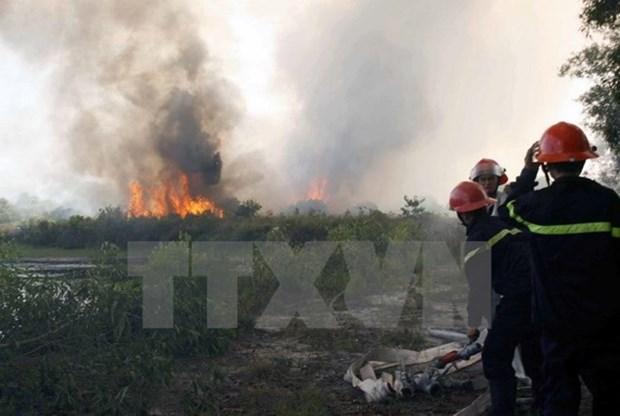 Provincia vietnamita de Bac Giang refuerza prevencion contra incendios forestales hinh anh 1