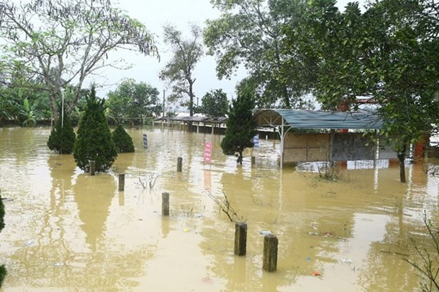 Inundaciones provocan 15 muertos en Vietnam hinh anh 1