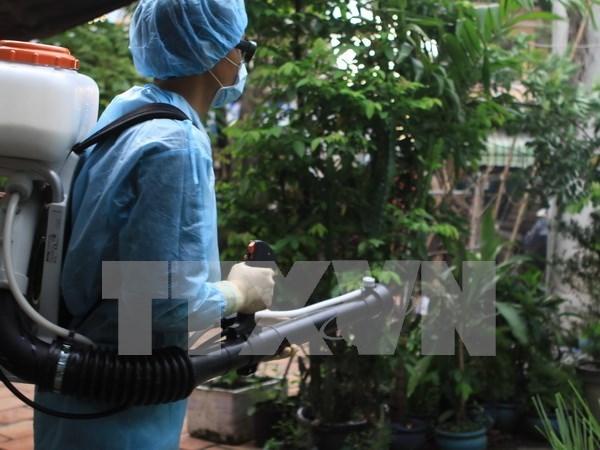 Ciudad Ho Chi Minh refuerza medidas preventivas contra el Zika hinh anh 1