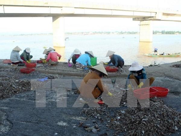 Ofrecen ayuda adicional para pobladores de zonas afectadas por incidente ambiental hinh anh 1
