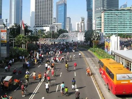 Indonesia informa de otro paquete de politica economica hinh anh 1