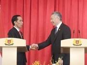 Indonesia y Singapur refuerzan la cooperacion hinh anh 1