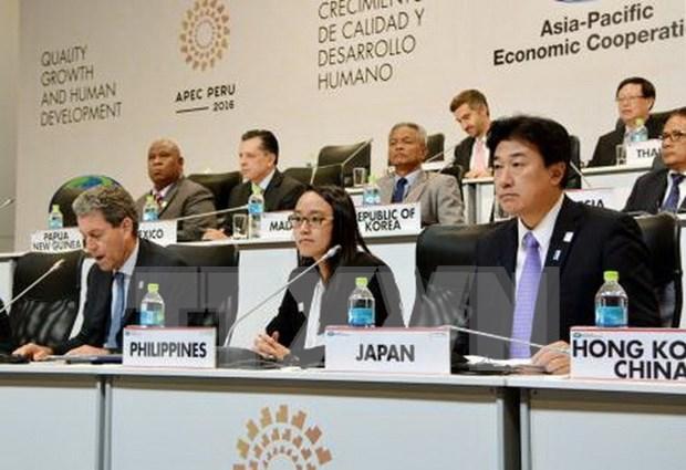 Inauguran en Peru semana de Cumbre de APEC hinh anh 1