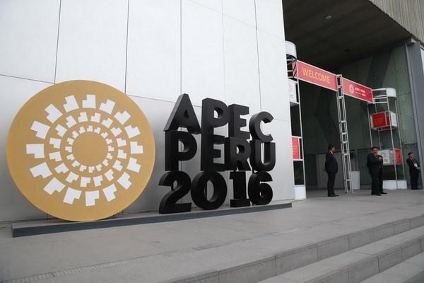 Vietnam desempena importante rol en marco de APEC hinh anh 1