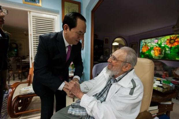 Presidente de Vietnam se reune con Fidel Castro hinh anh 1
