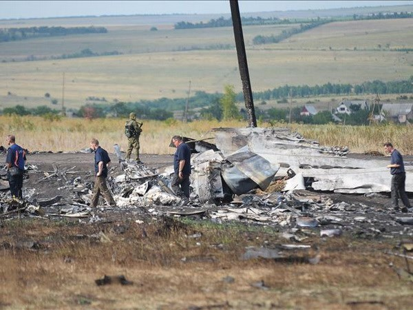 Responsables de tragedia del vuelo MH17 seran identificados en 2018 hinh anh 1