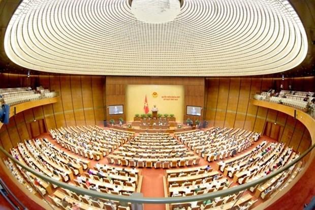 Parlamento de Vietnam revisara expedicion piloto de visado electronico a extranjeros hinh anh 1