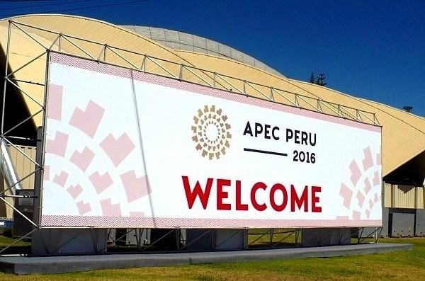 Vicepremier vietnamita interviene en la conferencia ministerial de APEC en Peru hinh anh 1