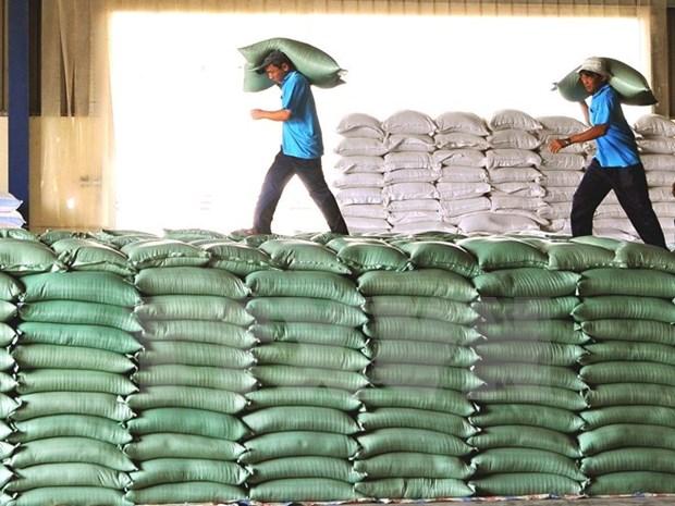 Empresas chinas estudian mercado de arroz en la provincia vietnamita hinh anh 1