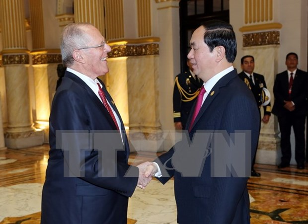 Presidentes de Vietnam y Peru discuten el fortalecimiento de lazos binacionales hinh anh 1