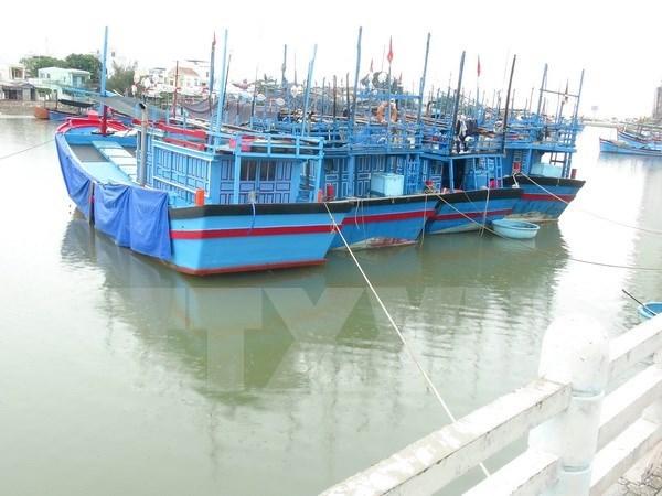 Aumentan flota pesquera de provincia centrovietnamita de Thanh Hoa hinh anh 1