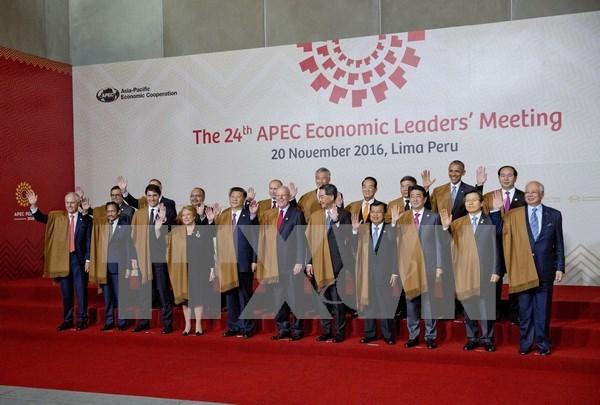 Lideres de APEC prometen a luchar contra proteccionismo hinh anh 1
