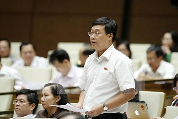 Debuta Grupo de jovenes diputados de la Asamblea Nacional de Vietnam hinh anh 1