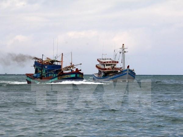 Crean asociacion de pescadores en provincia central de Vietnam hinh anh 1