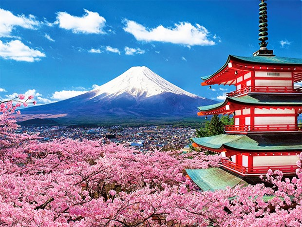 Japon abrira oficina representativa en Vietnam para promover turismo hinh anh 1