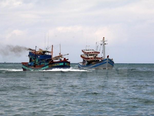 Rescatan a 11 pescadores accidentados en el mar de Vietnam hinh anh 1